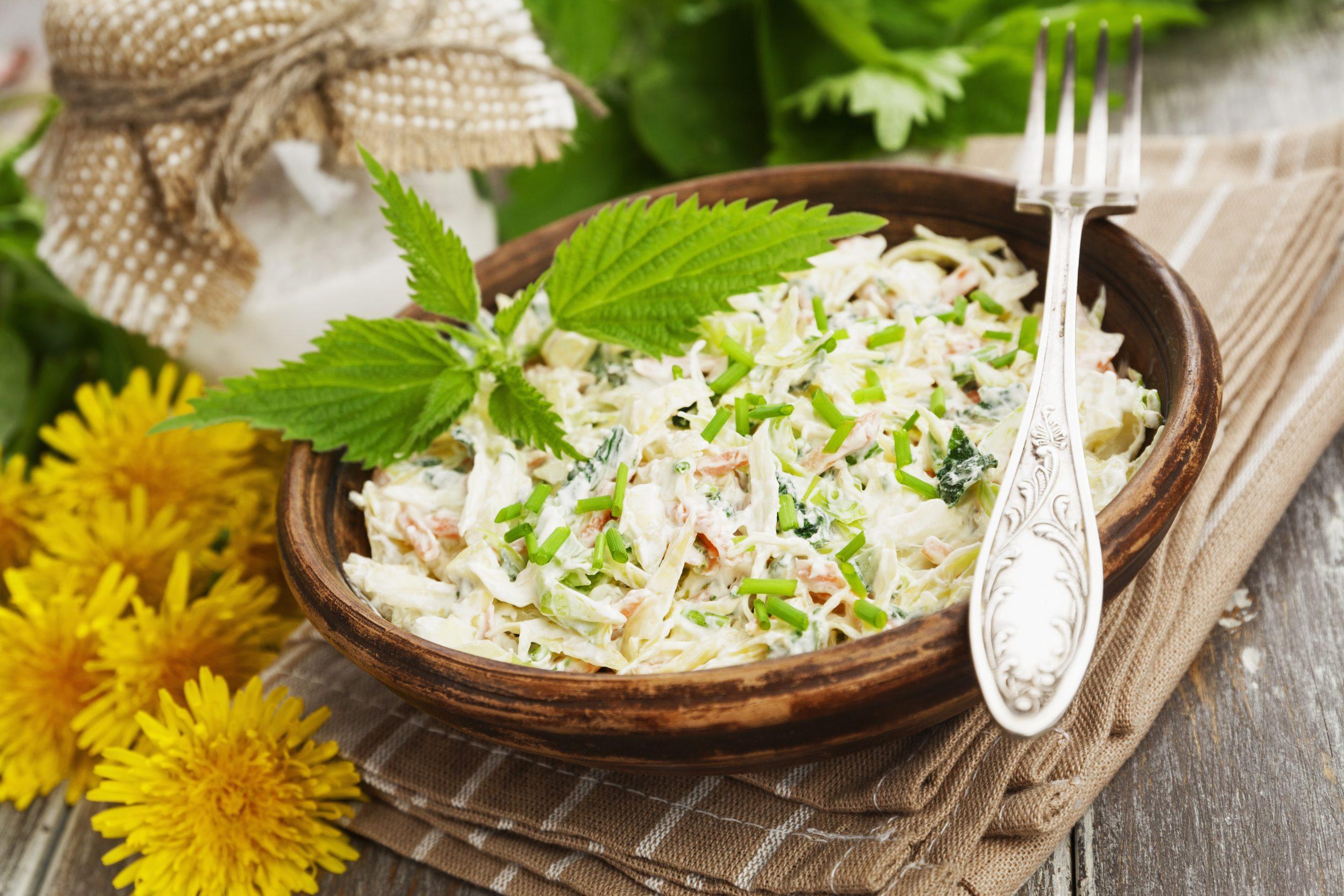 Chinakohlsalat mit Geflügel und Joghurtdressing